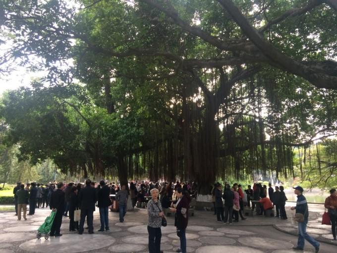 中山公园.jpg