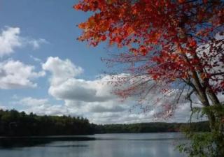 梭罗:瓦尔登湖的冬天,寂静,处处闪烁光芒