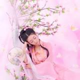 梦入桃花园