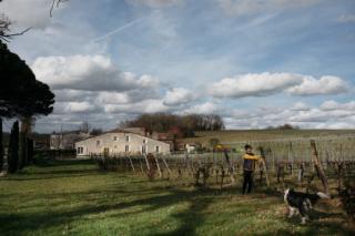 中国资本入侵法国波尔多,酒庄更名惹争议