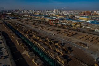 中国在俄罗斯等国破坏性伐木引发愤怒和批评