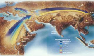 线粒体夏娃:人类起源于非洲