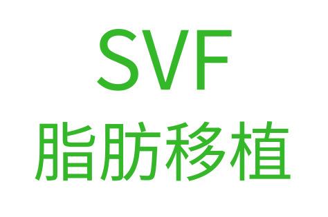 SVF脂肪移植