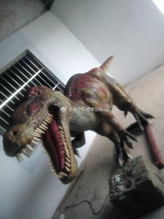 【港基模型】广西南宁武呜恐龙模型展的恐龙模型…
