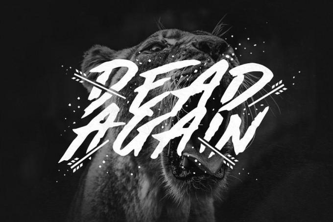 Made by Bears笔刷感字体
