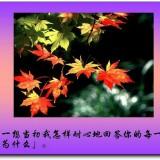 mu4JhV.th.jpg