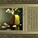 mM1PX9.th.jpg