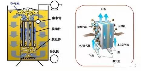MBR反应器启动调试运行指导手册