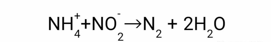 厌氧氨氧化(ANAMMOX)脱氮工艺