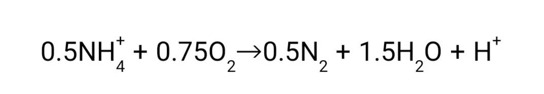 限制自养硝化反硝化(OLAND)脱氮工艺