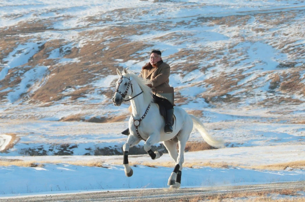 朝鲜官方新闻机构周三发布了一张朝鲜独裁者金正恩骑在马上的照片。