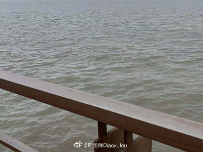 江景 拍摄上海宝钢集团宣传片花絮的一天 新闻中心 4