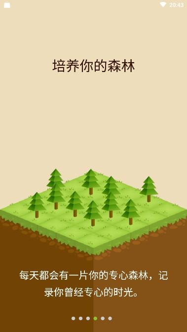 因为专注,种一片Forest