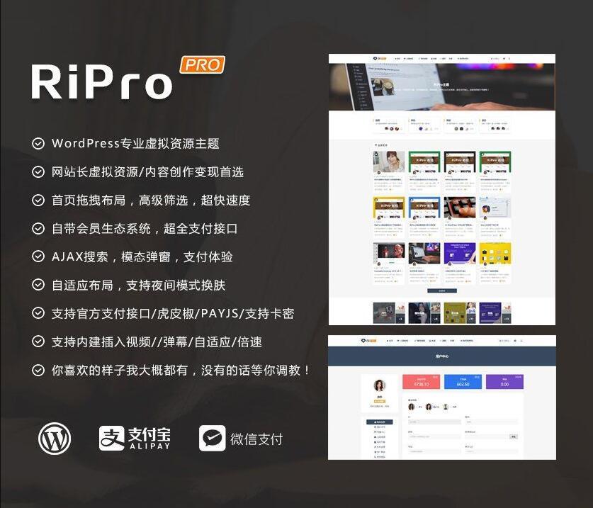 WordPress主题 RiPro 4.6 资源下载带美化包-52资源网