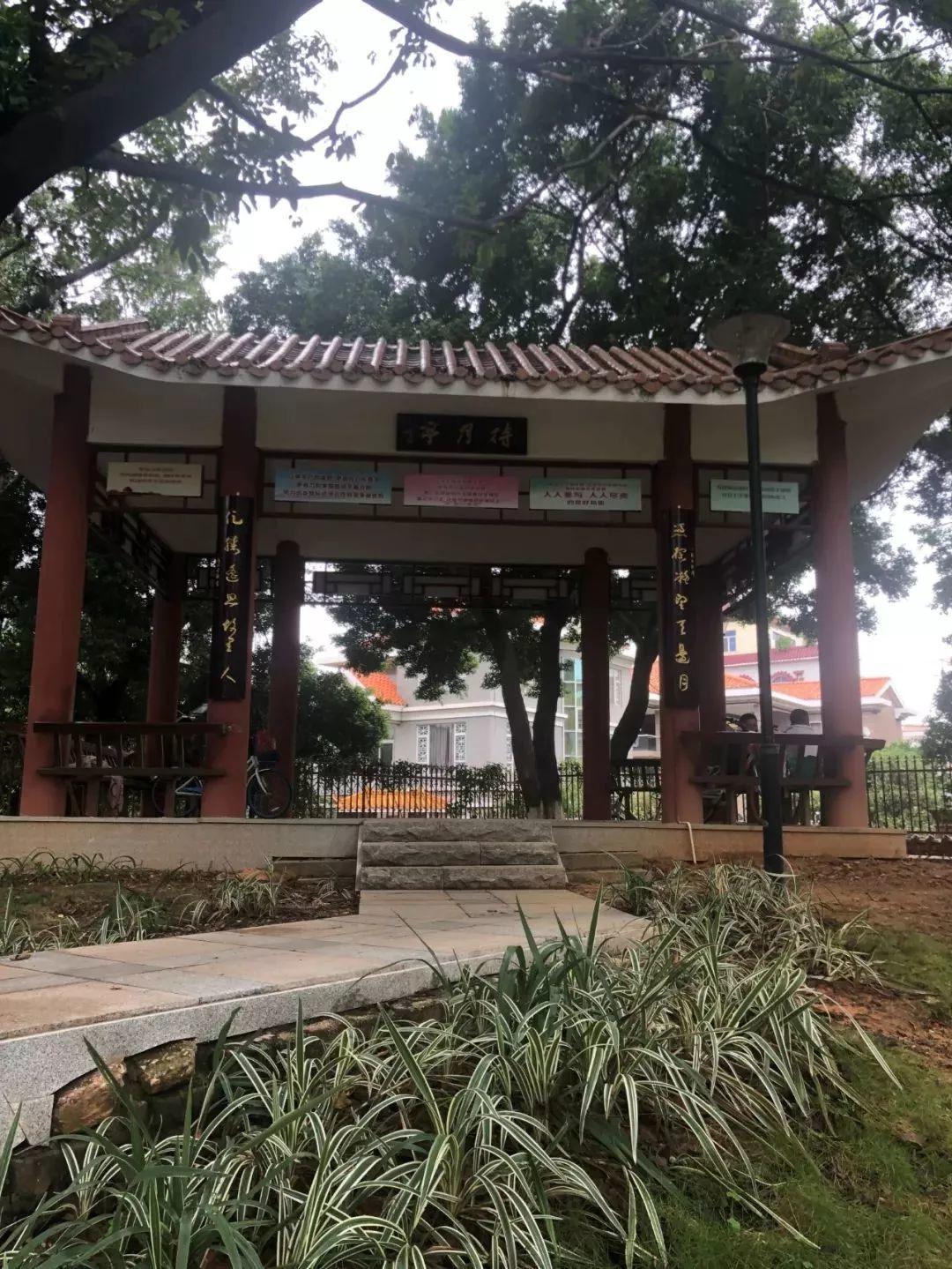东莞市厚街镇三屯公园20瓦LED投光灯、4.5米庭院灯照明工程