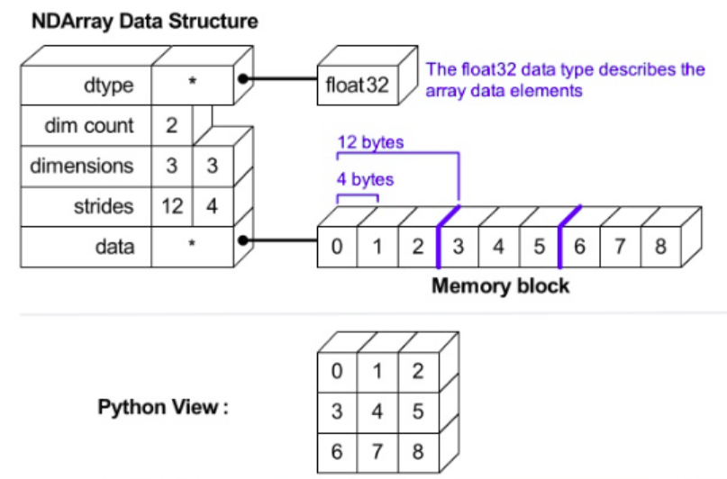 https://stackoverflow.com/questions/57262885/how-is-the-memory-allocated-for-numpy-arrays-in-python