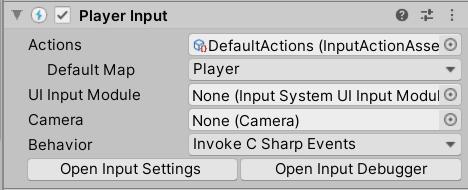 Player Input