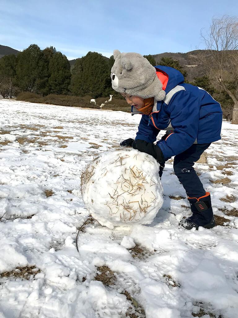 推雪球的小熊