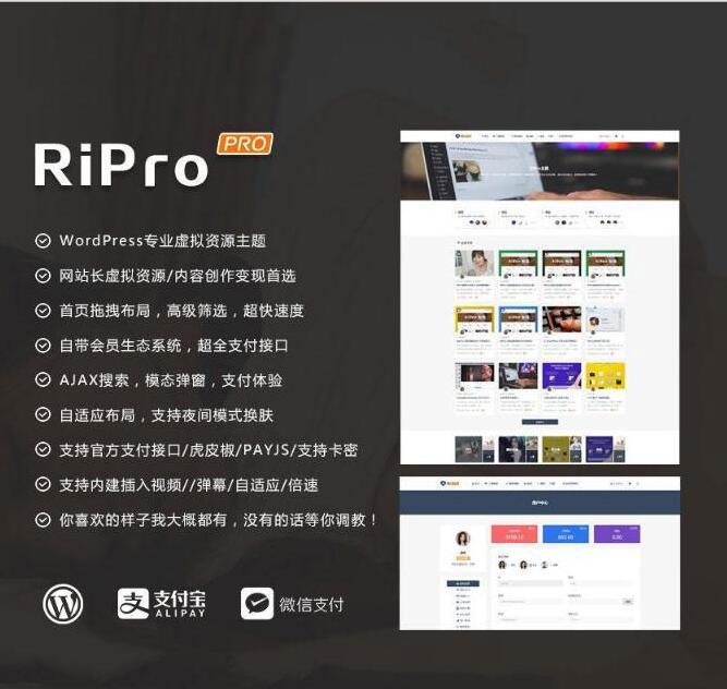 WordPress模板RiPro主题破解版